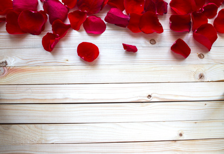 Rose Petals Border Stock Photo
