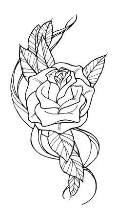 rosas negras: Hermosa rosa tatuada, esbozar ilustraci�n en blanco y negro