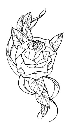 Beautiful rose tattoo, outline black and white illustration
