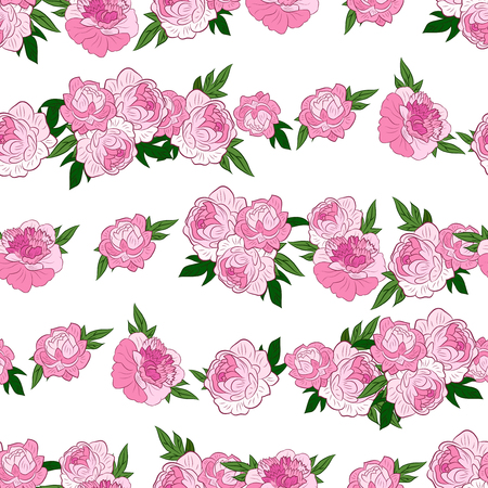 Seamless pattern with horisontal rows of beautiful pink peonies on white background. Vector illustration. Good for web, wrapping paper. Çizim