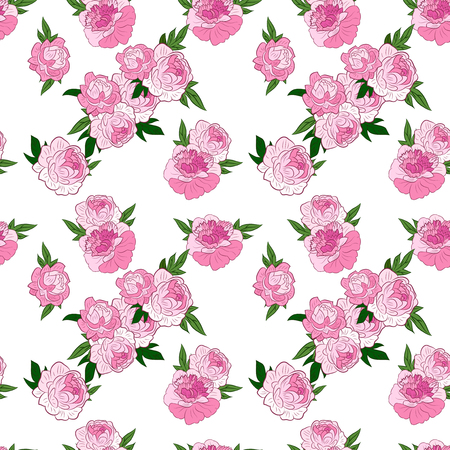 pink floral: Seamless floral pattern with beautiful pink peonies on white background. Vector illustration.