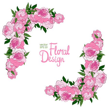 peonies: Vector corner with pink peonies on a white background.
