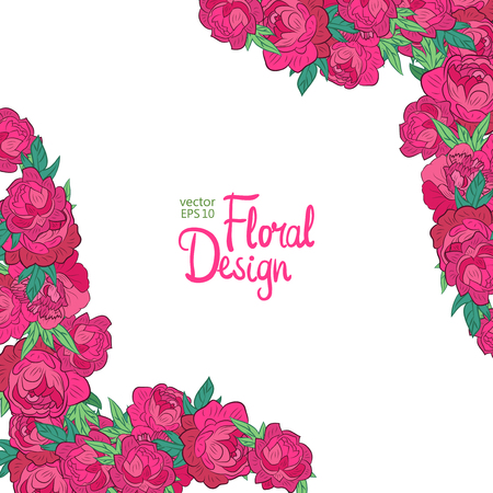peonies: Vector corner with peonies on a white background. Illustration