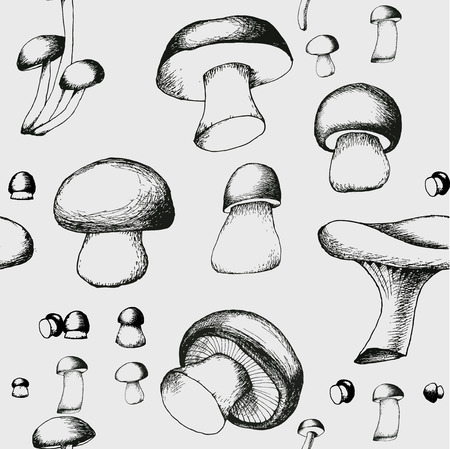 agaric: Hand drawn black and white seamless pattern with mushrooms. Vector doodle monochrome illustration. Boletus, chanterelle, agaric and russala. Illustration