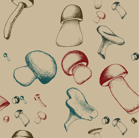 Hand drawn seamless pattern with mushrooms. Vector doodle illustration. Sketchy boletus, chanterelle, agaric and russala.