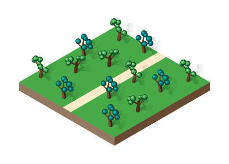 Isometric view projection summer landscape.