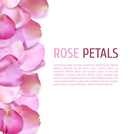 fallen: Pink Rose petals border