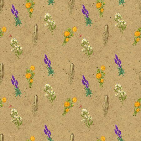 Hand drawn medicinal plant seamless pattern. Healing herbs drawing on craft paper. Illustration of pharmacy chamomile, lavender ginseng calendula Stock Photo