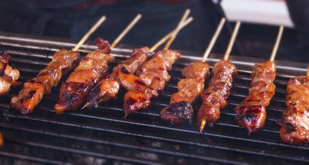 Pittige geroosterde kipsaté / satésticks opgesteld op een hete barbecue Stockfoto - 93563460