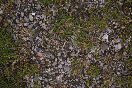 a ground texture background with pieces of grass, small rocks / pebbles and dirt photographed from above