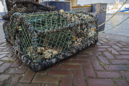 a crab fishing cage filled with left over crab on the docks of the harbor
