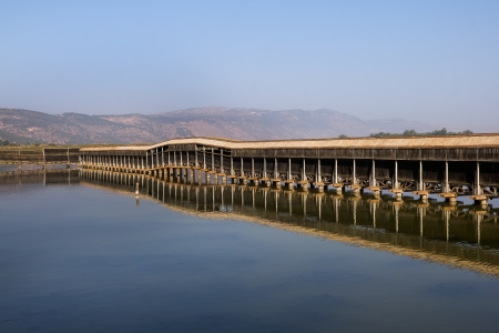 nature reserves of israel: Hula Nature Reserve in Israel