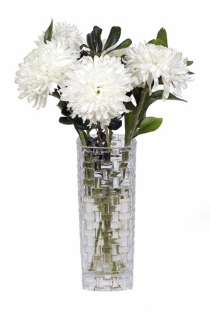 white flowers in a vase on a white background photo