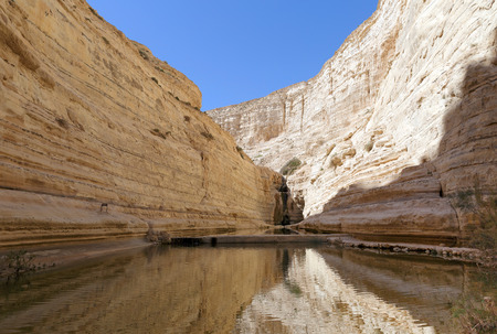 canyon negev: Avdat Canyon in Negev desert, Israel