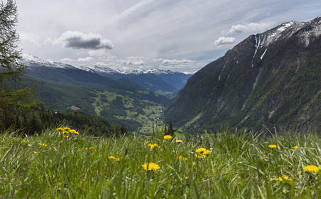 austrian: meadows and mountains of the Austrian Alps