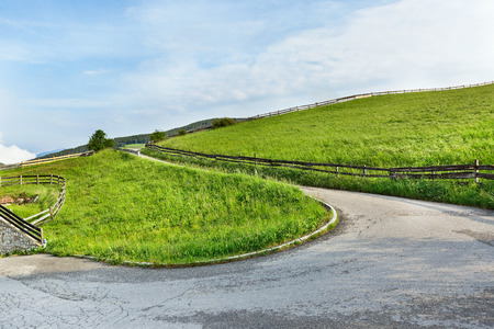 curve road: winding road among the grass landscape
