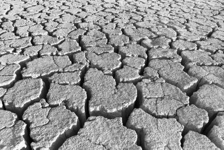 cracks in the land of black and white background 版權商用圖片