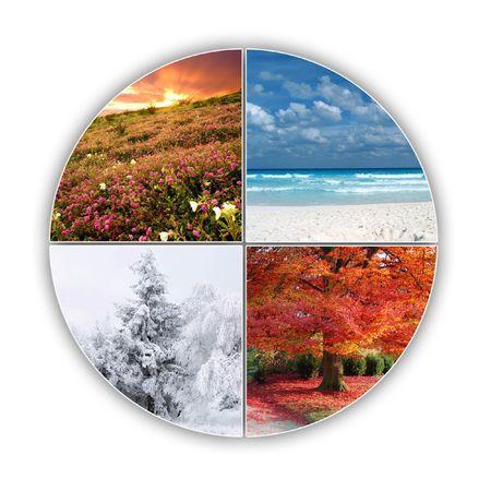 quatre saisons: Quatre saisons de l'ann?e sur une image