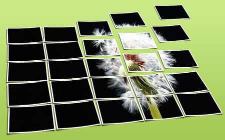 posterity: Dandelion consisting of many slices of a photo