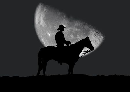 which: Illustration of a silhouette of the cowboy which costs near a horse