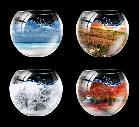 Four seasons of year in an aquarium in one picture