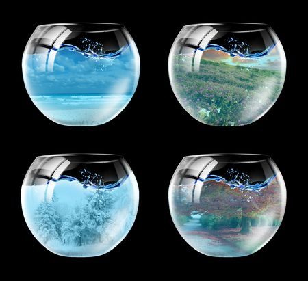 Four seasons of year in an aquarium in one picture Stock Photo - 5799471