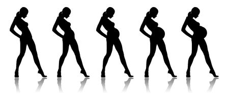 Illustration of a silhouette of the pregnant woman on a white background illustration