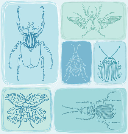 cerulean: Hand drawn Beetles seamless pattern. vector illustration Illustration