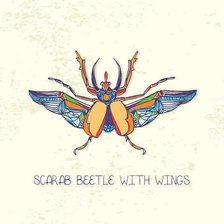 scarab: Hand drawn Scarab beetle with wings.Multicolor vector illustration
