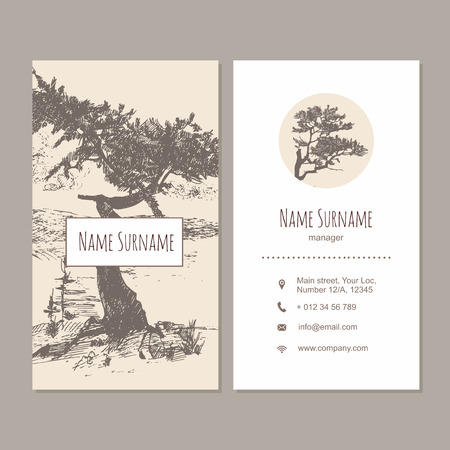 visiting card: Business card or visiting card design template. Vector flyer layout,hand drawn background with pine tree detailed illustration Illustration