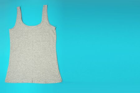 Gray sleeveless female casual tank top on blue background. Copyspace. Sport, fitness aparrel. Basic look. Фото со стока - 128780992