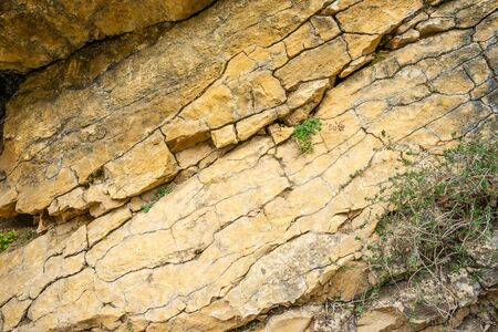 Background texture of a cracked rock with green plants in a natural park congost de Mont-rebei Monrebey in Spain. Dangerous gorge and cliff. Stock Photo
