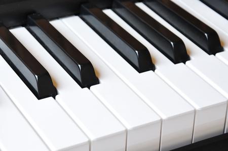 white piano: Piano keys;