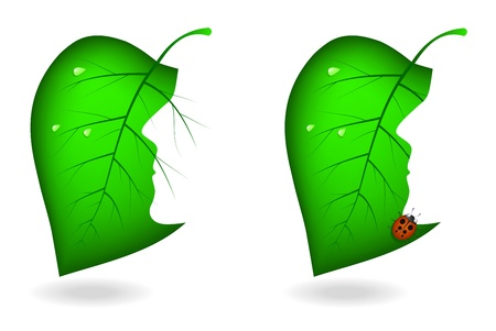 Green leaves with cut in the form of the person Vector