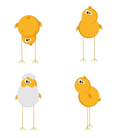 broken eggs: Four funny chicken on a white background Illustration