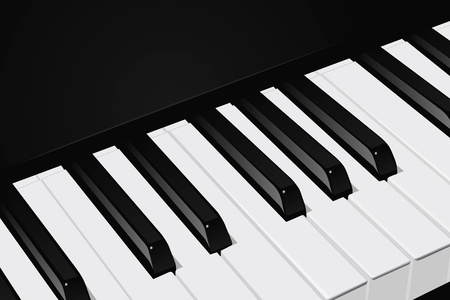 The realistic vector image a piano key Vector