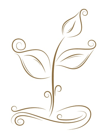 Beautiful sketch of the sprout golden brush Vector