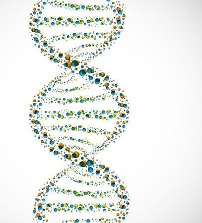 genetica: Molecola di DNA di sfere Vettoriali