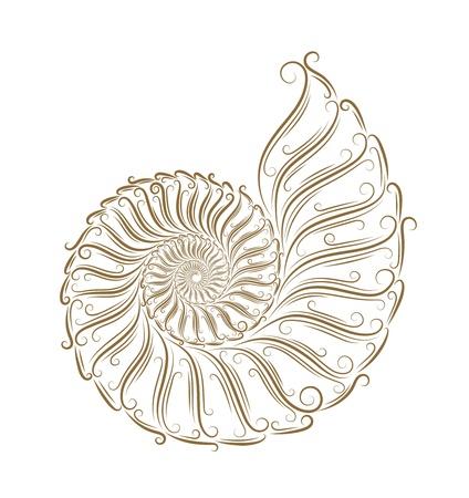 caracol: Sketch de conchas de oro Bruch Vectores