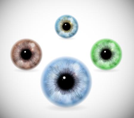 ojos marrones: Imagen realista de los colores de los ojos de los alumnos diferentes Eps 10