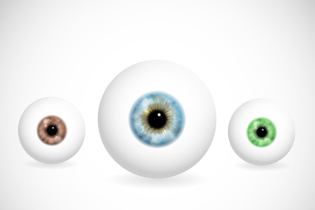 isolated irises: Image of eyeball with various colors of pupils  Eps 10