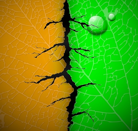 Leaf of tree with a crack middle Stock Vector - 13186910