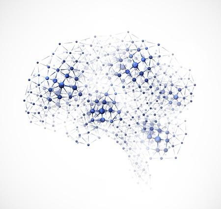 anatomy brain: Immagine astratta del cervello di molecole