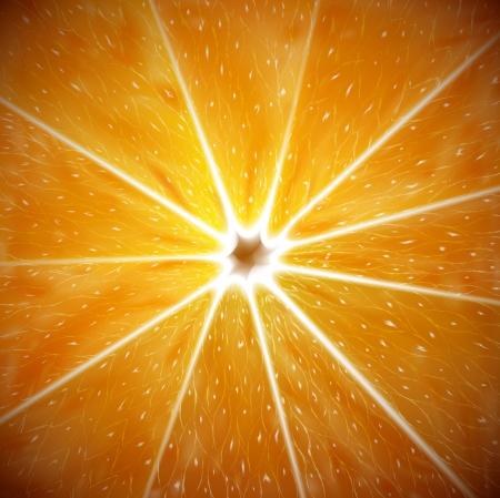 Orange background macro Stock Vector - 15484061
