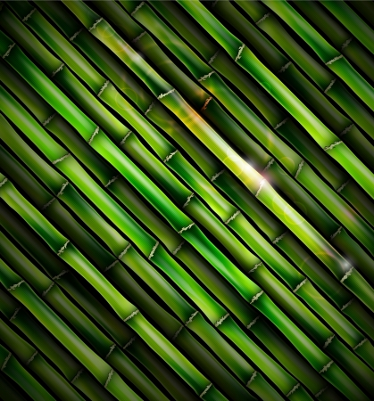 Background with bamboo Stock Vector - 16657169