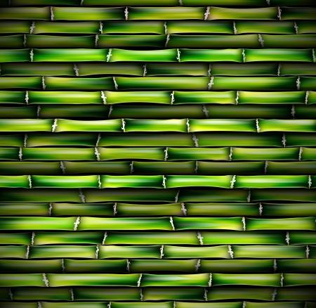 Hintergrund von Bambus Illustration