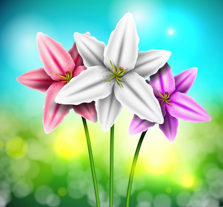 Natural background with lilies Stock Vector - 16656661