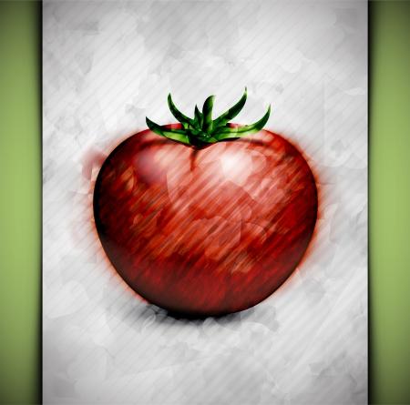 pomidory: Pomidor w stylu akwareli Ilustracja