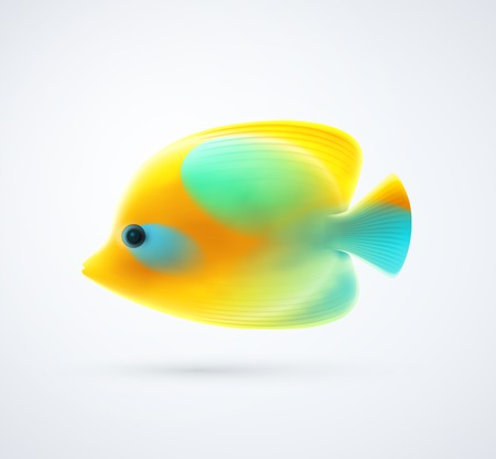 royal angelfish: Tropical yellow fish. Illustration contains transparency and blending effects