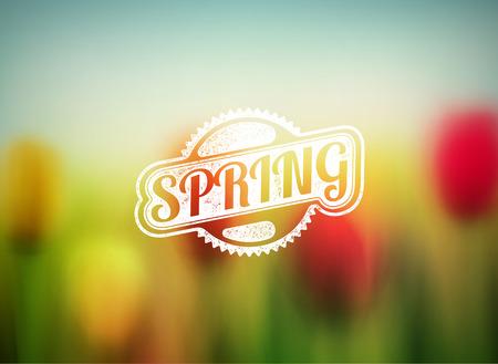primavera: fondo borroso primavera